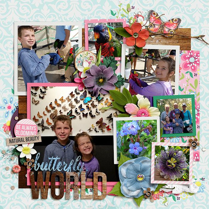 02-10-15_singleton38-LAwildflowerW