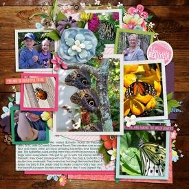 02-10-15_singleton32-LAwildflowerW.jpg