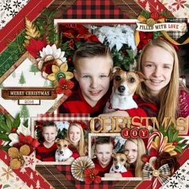 christmasjoyweb700.jpg