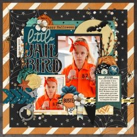 littleljailbirdweb700.jpg