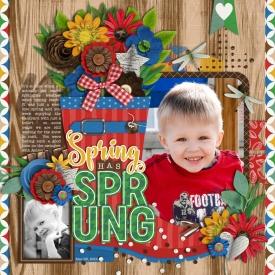 spring-has-sprung700web.jpg