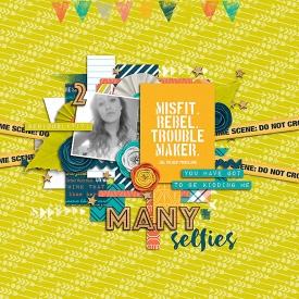 2-many-selfies-web-700.jpg