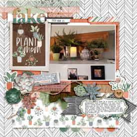 FakePlantMom_Cheryl_HomeDecorations_2020-03-25.jpg
