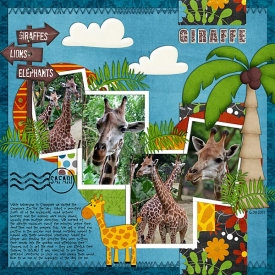 TR-Safari-Party.jpg