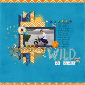 Wild_at_Heart_big.jpg