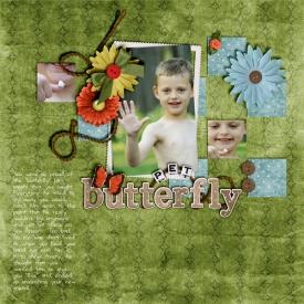 pet-butterfly.jpg