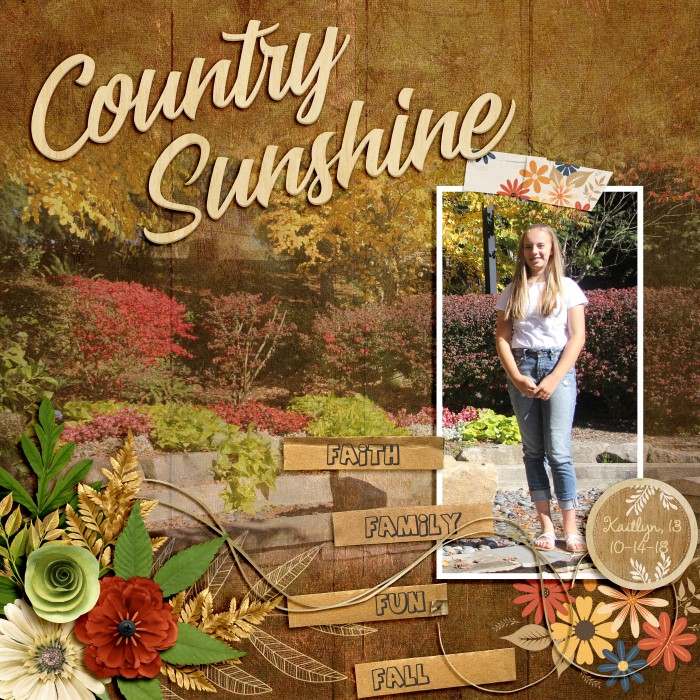 8-30_Country_Sunshine_700_x_700_