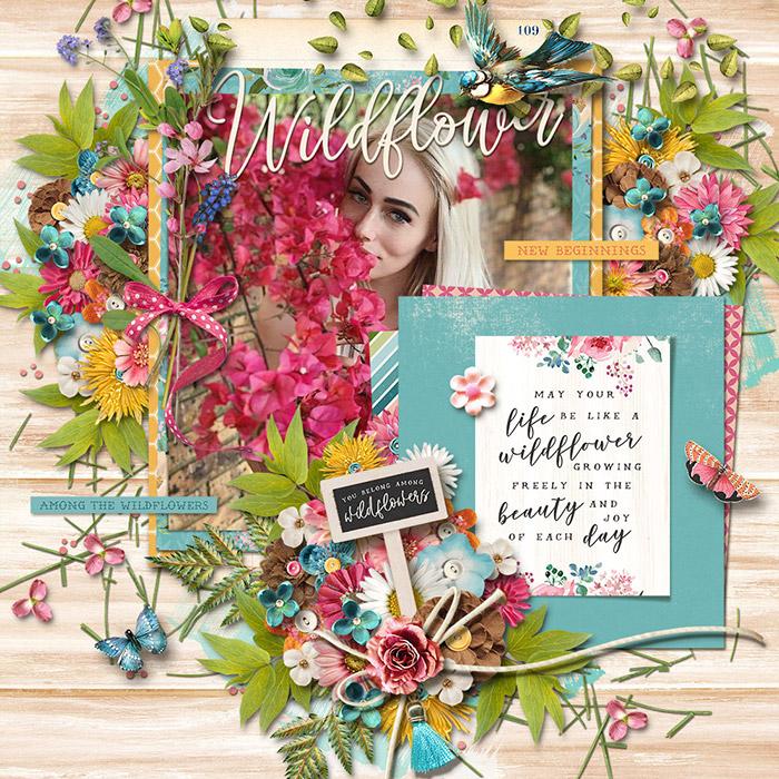 Wildflower7001