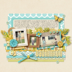 09-04-12-badminton.jpg
