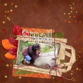 20070627_WOW_small_wonders.jpg