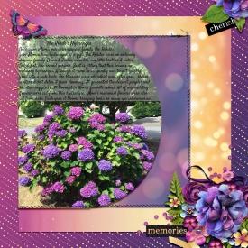 2018-09-Hydrangea-Reflective-PageWEB.jpg