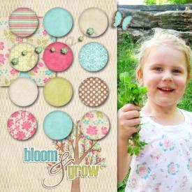 Bloom-and-Grow-SmallLR.jpg