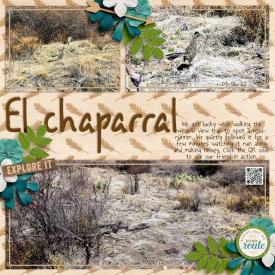 ElChaparralweb.jpg