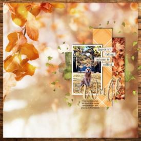 In_the_leaves.jpg