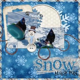 Snowmuchfun.jpg