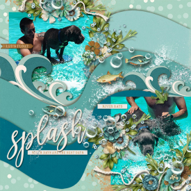 Splash7001.jpg