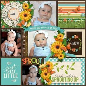 Sprouting_up_and_dagi_temp.jpg