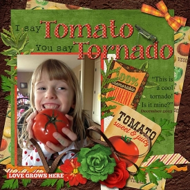 Tomato_Tornado-web.jpg