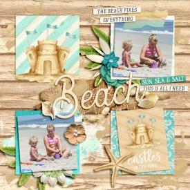 beachsm.jpg