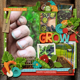 grow-web4.jpg