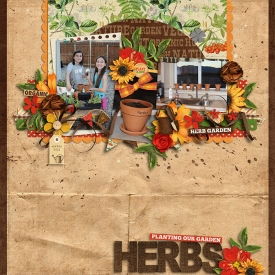 herbgarden-web.jpg