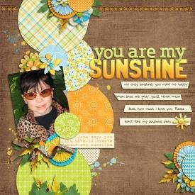 sunshine-web5.jpg