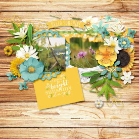 wildflowers3.jpg