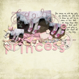 c-princess-feb09-SMALL1.jpg