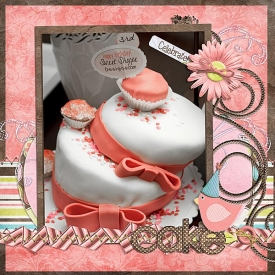 ssd_birthdaycake.jpg