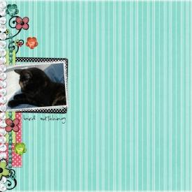 birdwatchingLR.jpg
