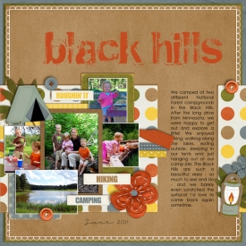 2011_6_BlackHills.jpg