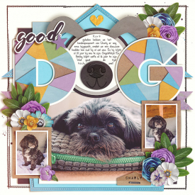 Good-dog-7001.jpg