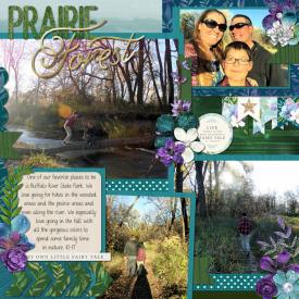 Prairie_Forest_web.jpg