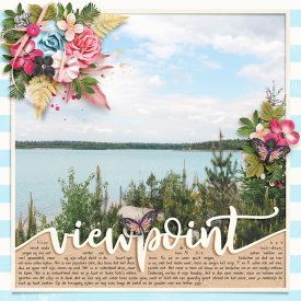 Viewpiont-700.jpg