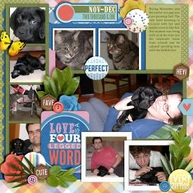 ourPets2001-web-700.jpg
