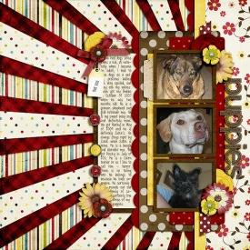 puppies_web1.jpg