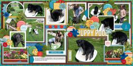 puppyPool2013-web-700-both.jpg