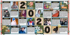 yearInReview2020-web-700-both.jpg