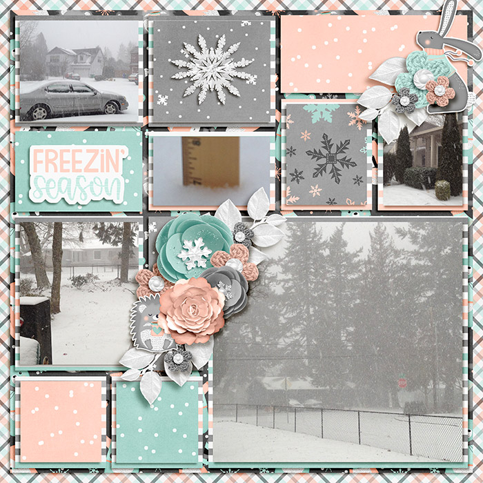 Freezin Season