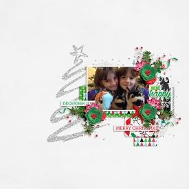 20121225fcpdj700.jpg