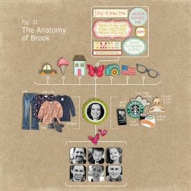 2012_anatomybrookWEB.jpg
