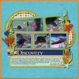 discoverycove-copy.jpg