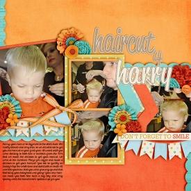 haircut4harry-copy.jpg