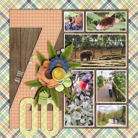 At-the-zoo-700.jpg