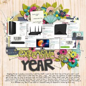 Expensive-year.jpg