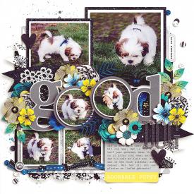 Good-dog-800.jpg