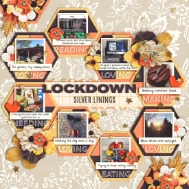 Lockdown-700.jpg