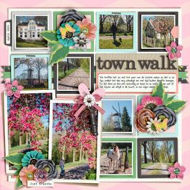 Town-walk-700.jpg