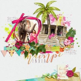 07-2018-Hampi-pink-web2.jpg