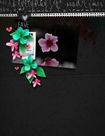 Fave.jpg